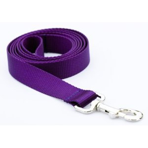 Dog Leashes and Leads